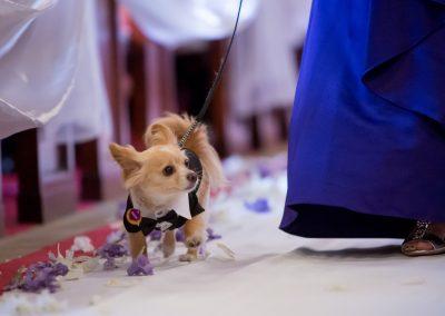 meadows events_los angeles wedding_ceremony